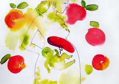 Plody ovoce