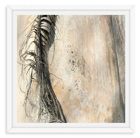 tree bark beige textured abstract horse
