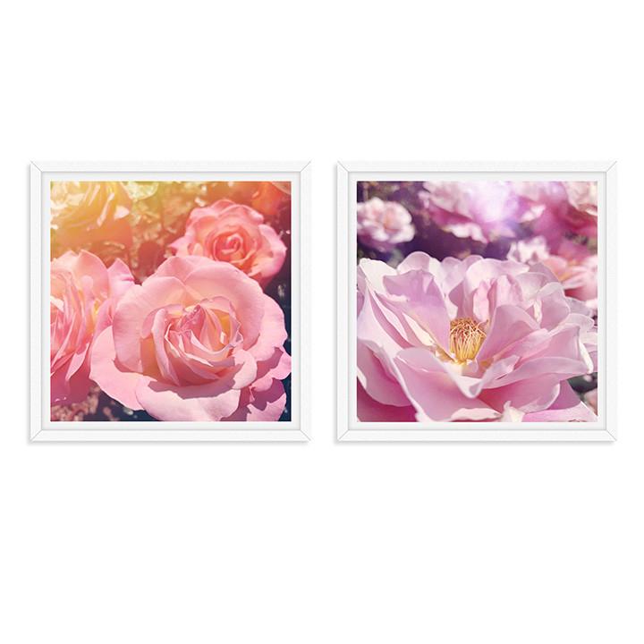 rose garden series flowers dreamy pink w