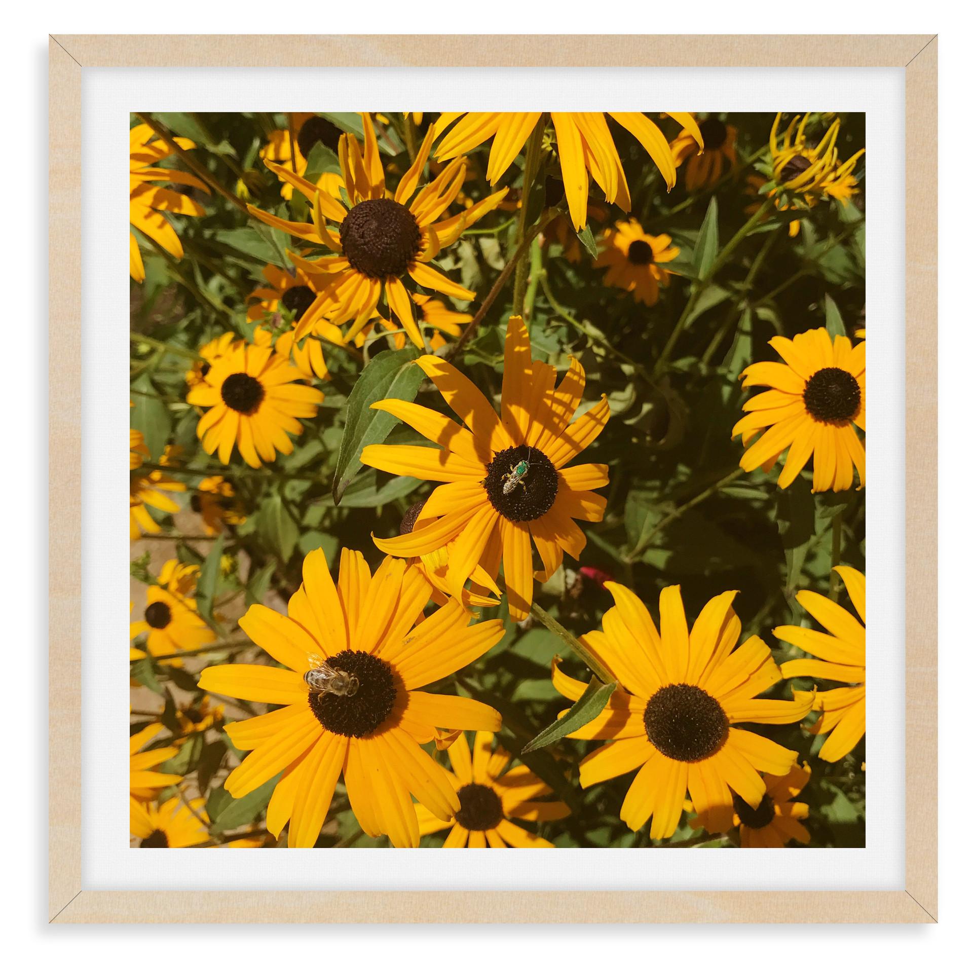 yellow daisies bees garden wall art leas