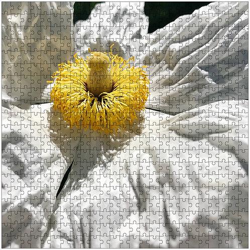 """Wrinkled Beauty"" - 500 Piece Fine Art Premium Puzzle"