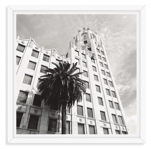 black and white palm tree building archi