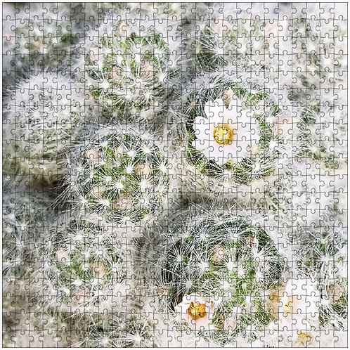 """Spiky and Sweet"" - 500 Piece Fine Art Premium Puzzle"