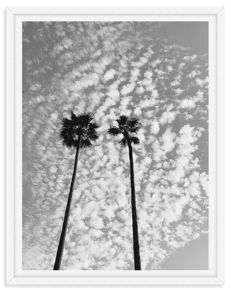 black and white palm tree clouds vertica