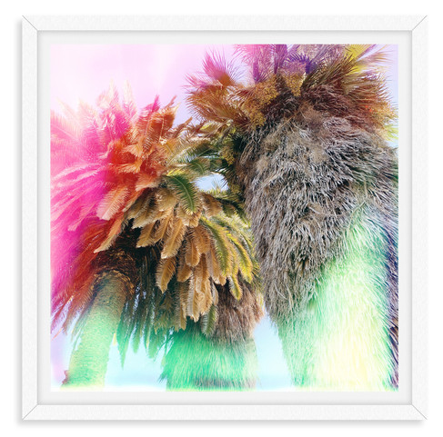 colorful pink green palm tree abstract w