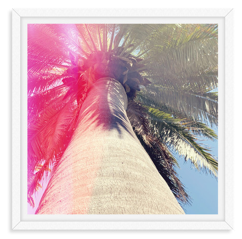 pink light palm tree wall art leasing lo