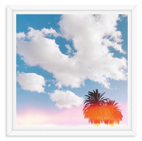 cloudy light leak palm tree california w