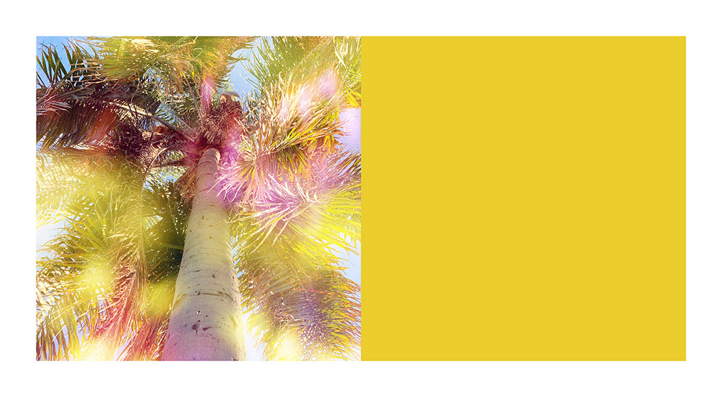 yellow color block.jpg