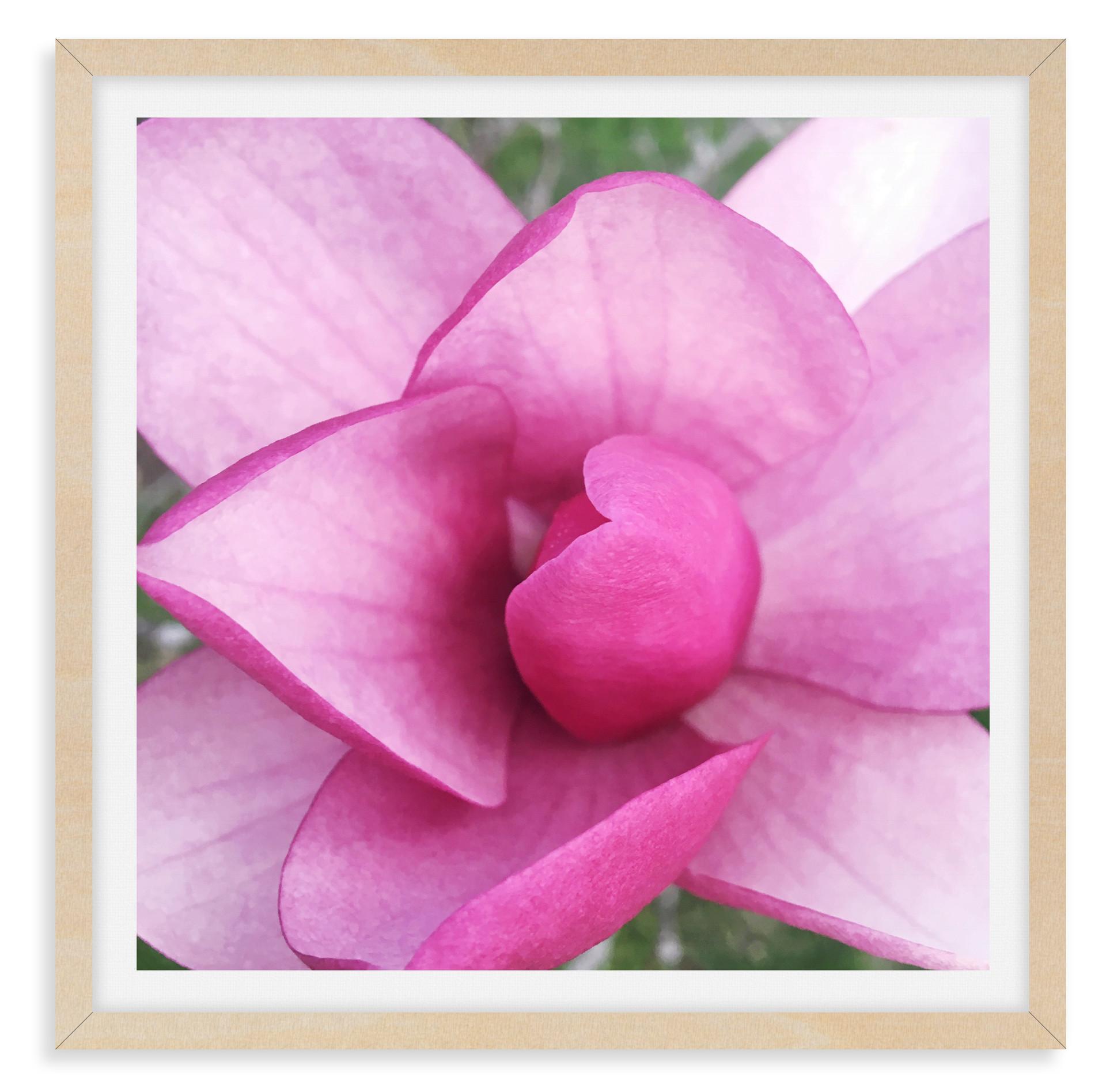 pink magnolia flower still life wall art