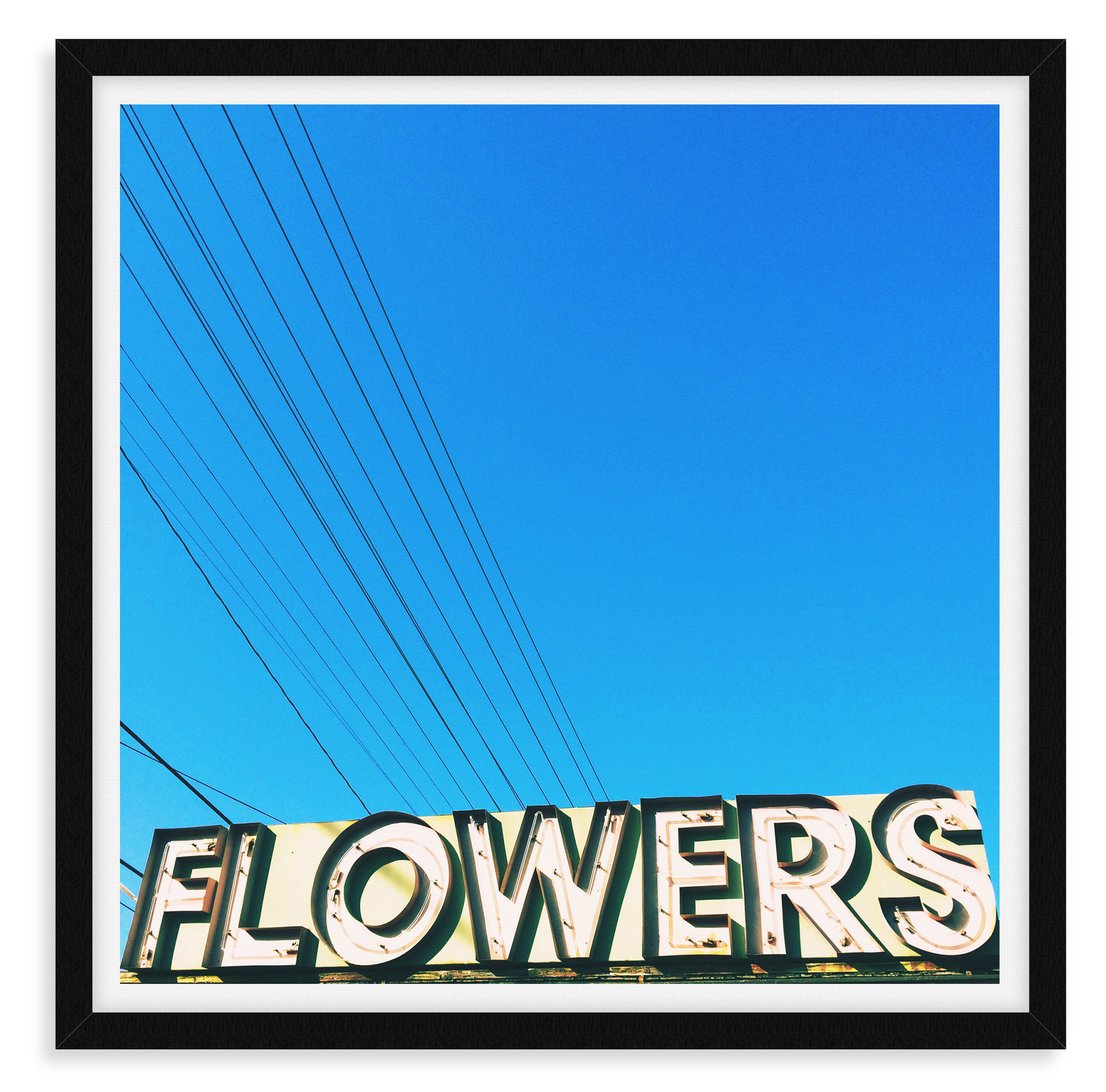 blue sky flowers neon sign power lines w