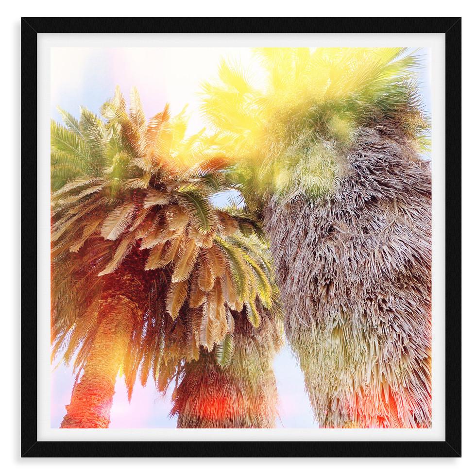 colorful yellow orange palm tree abstrac