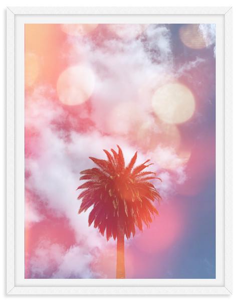 palm trees pink purple california sunset