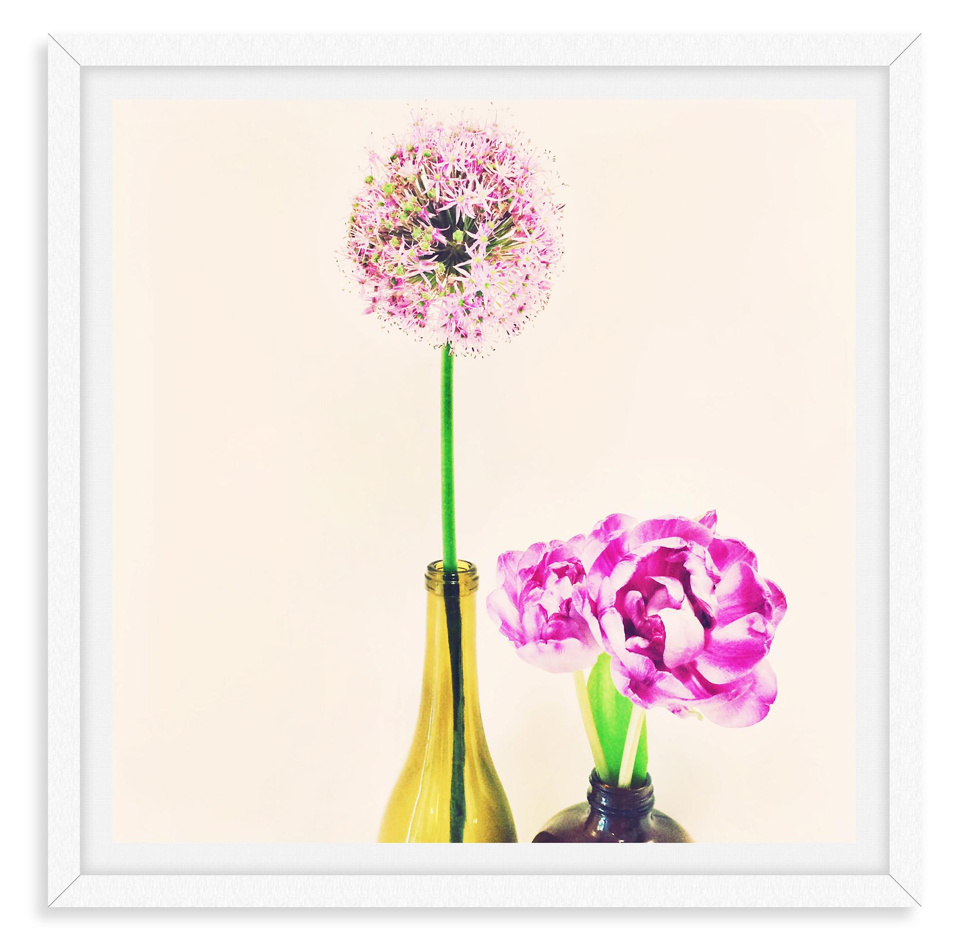 flowers illustration photography still l
