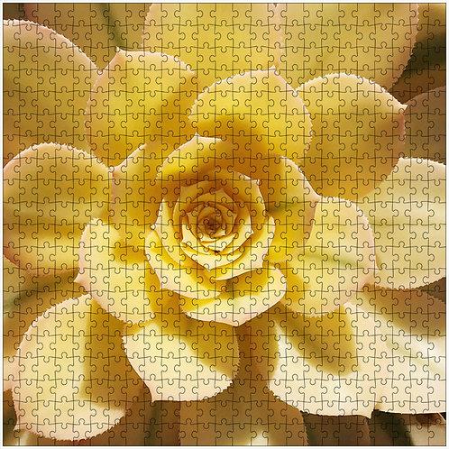 """Spiky Sunshine"" - 500 Piece Fine Art Premium Puzzle"