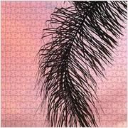 Palm Arm