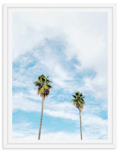 palm trees blue sky clouds california wa