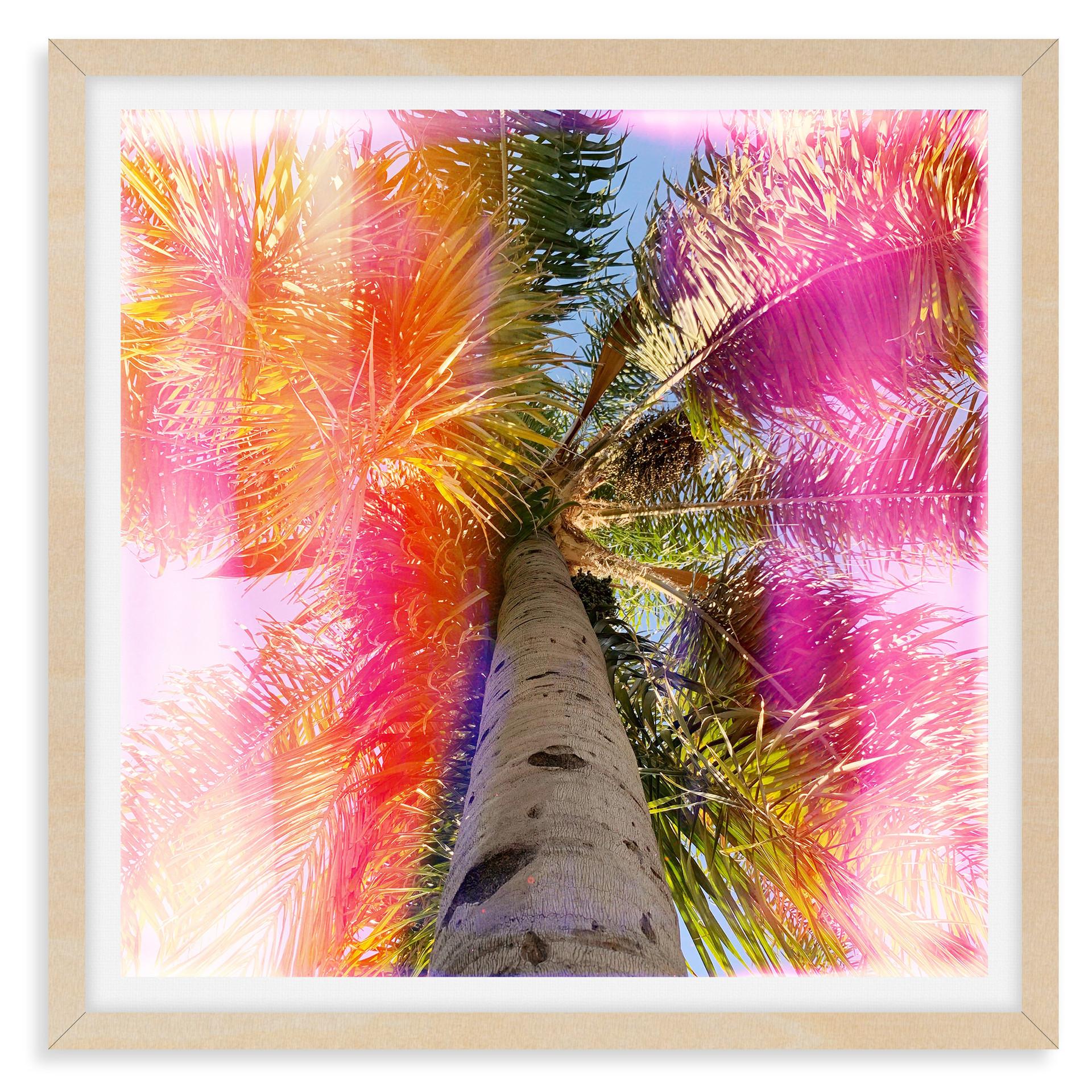rainbow stripe palm tree pink orange wal