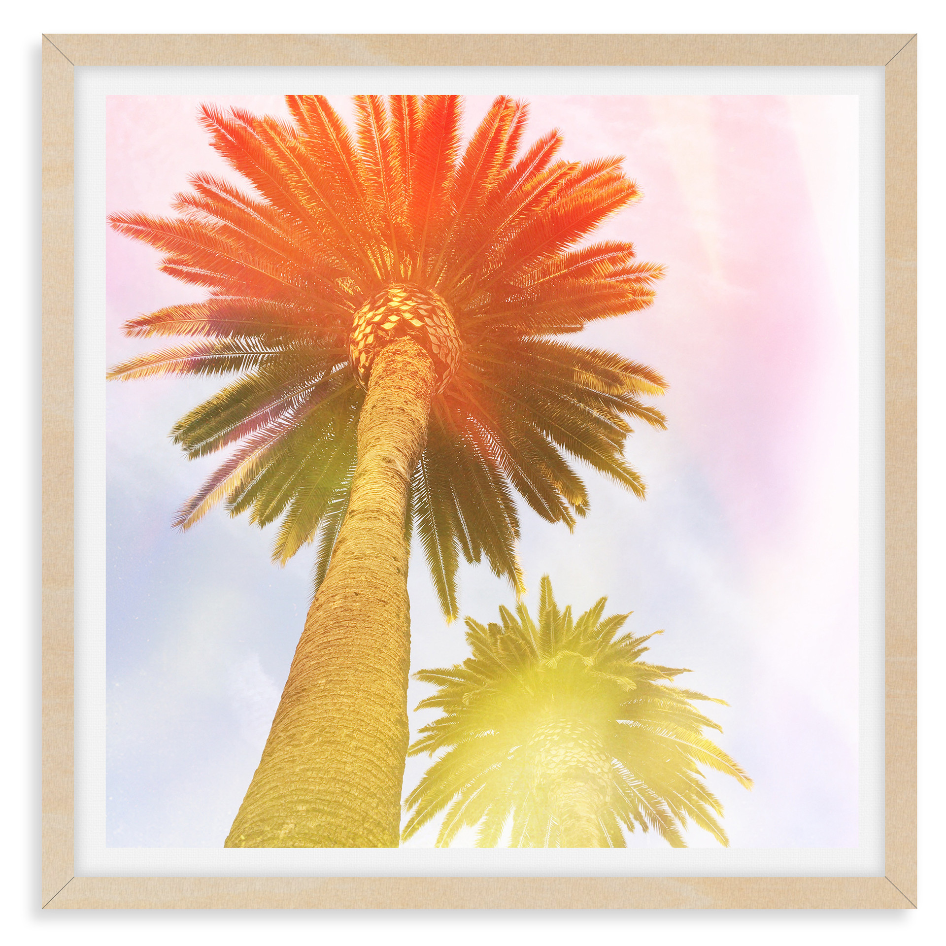 colorful palm tree orange yellow abstrac