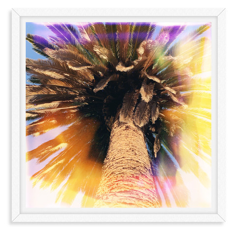 colorful palm tree yellow wall art leasi