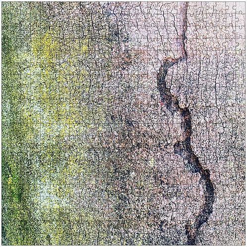 """""""Split"""" - 500 Piece Fine Art Premium Puzzle"""