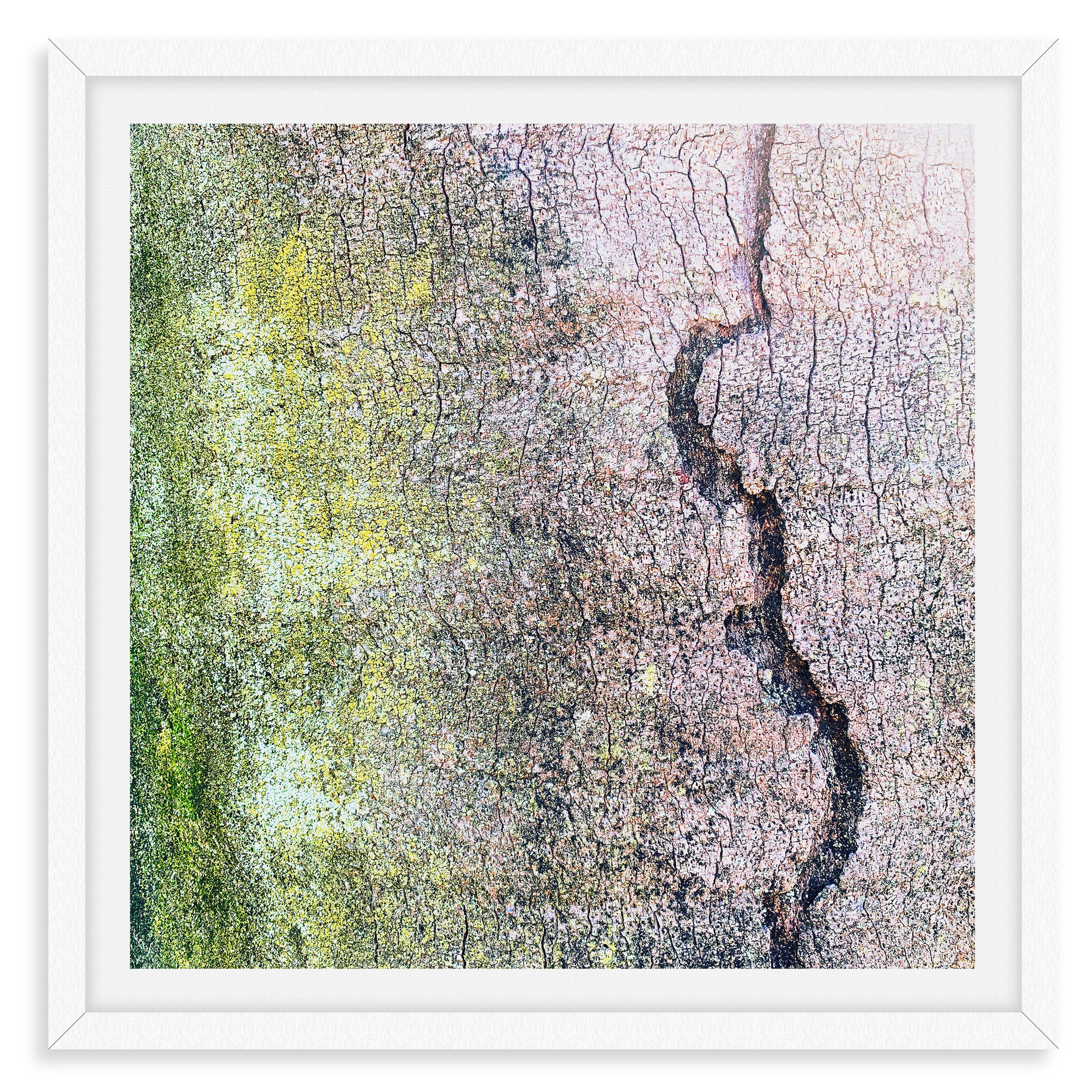 tree bark green pink abstract wall art l