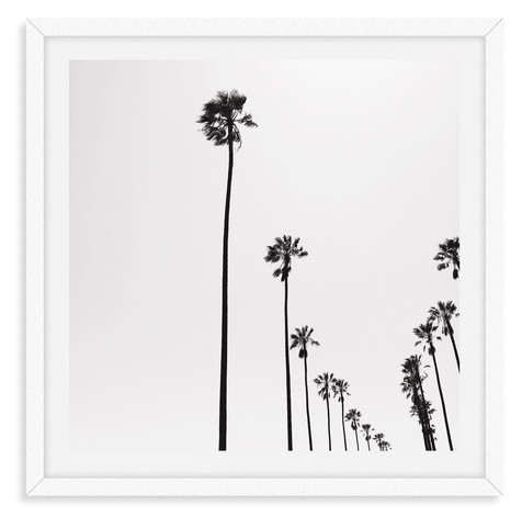 black and white palm tree wall art leasi