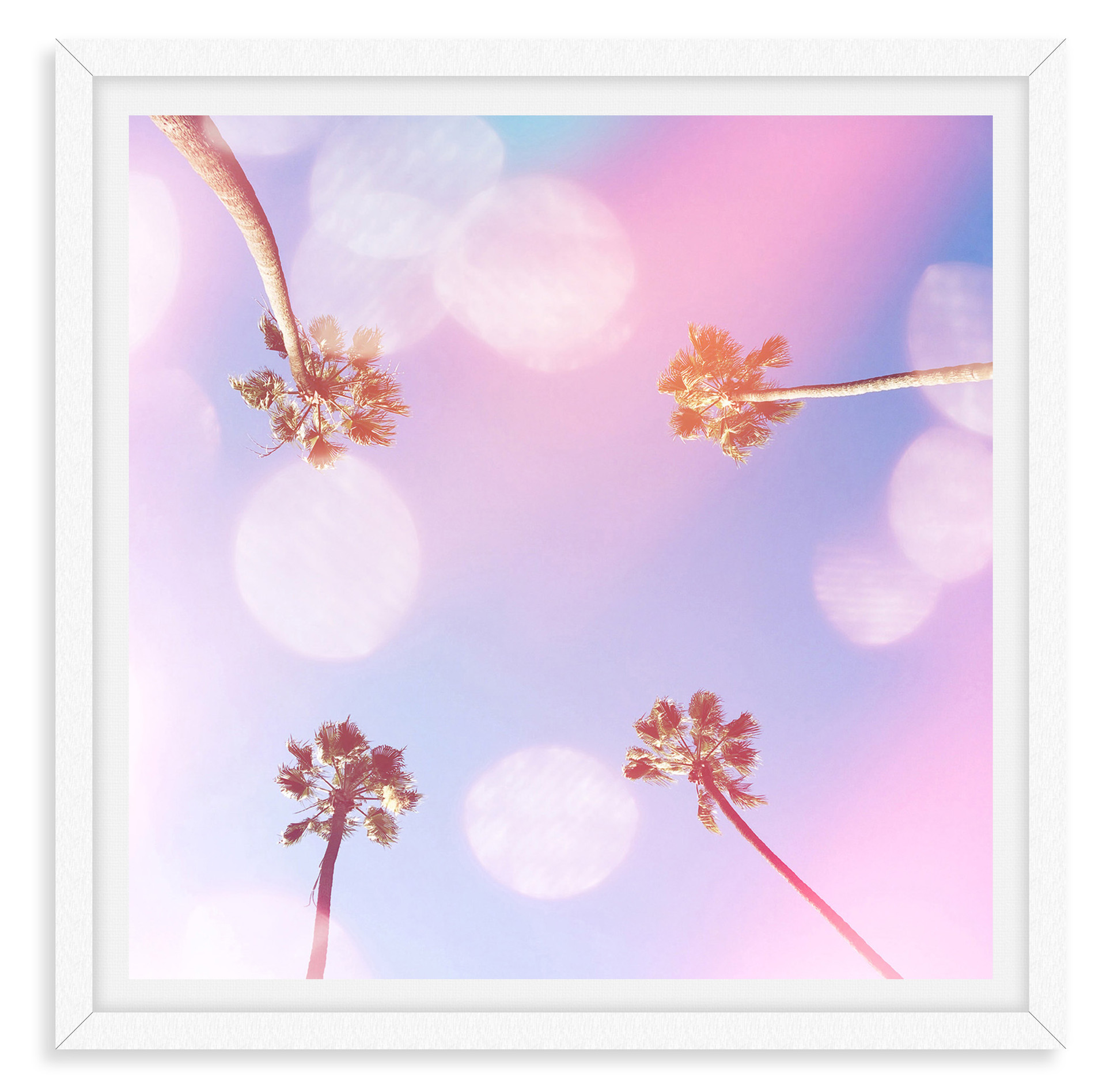 pink purple four palm trees whimsical wa