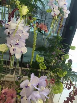 FLOWERS WORLD CIS INTERNATIONAL 2015