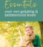 site inspiratiesessie Essentials.png