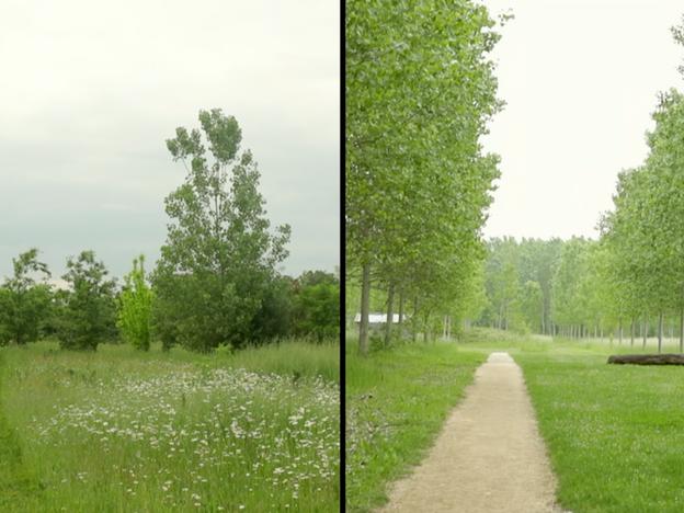 2018 - Parc Passeligne Pélissier Agen