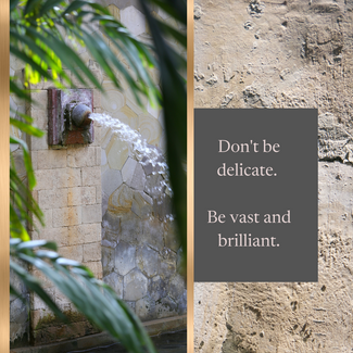 Don't be delicate. Be vast and brilliant.