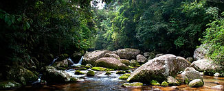 cachoeira-do-areado-ilhabela-bonete-foto
