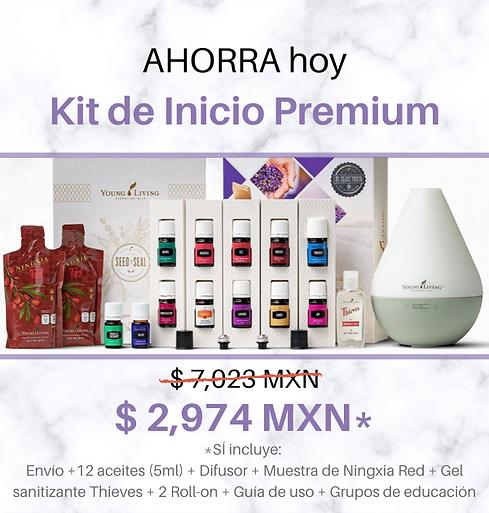 Kit nuevo + precio.png