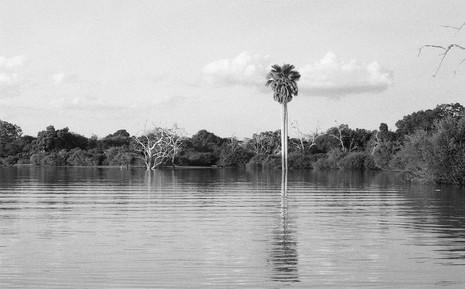 Rifiji River, Selous, Tanzania