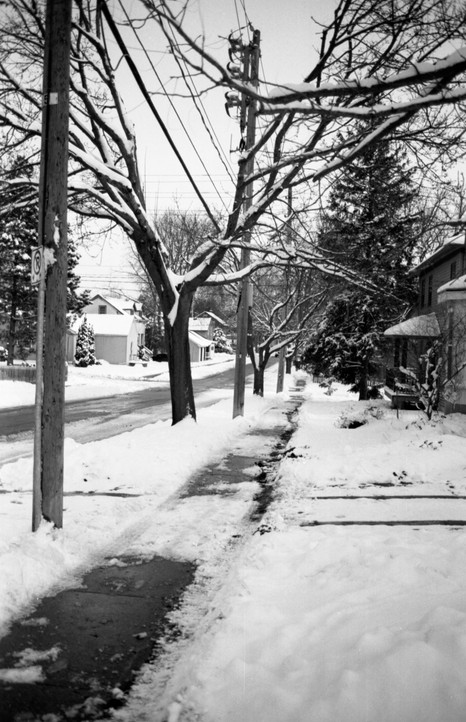 December in Guelph