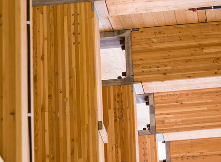 What's Our Future in Wood Products?