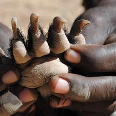 honey badger claws.JPG