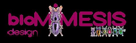 BIOMIMESIS+scarabei 10x4x300.png