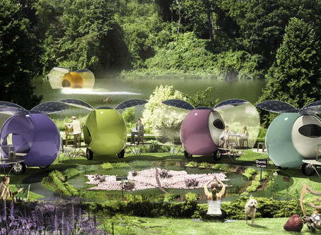 Biophilic Design, Cities and Camps