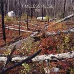 Timeless Pulse Trio is a 2 LP Set with Pauline Oliveros, George Marsh and Jennifer Wilsey. Released in honor of the 20th annual Deep Listening Retreats.