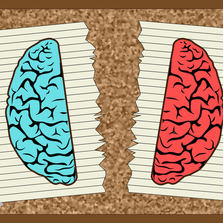 Split-Brain Patients