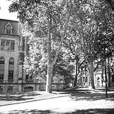 University-of-Pennsylvania-Philadelphia-
