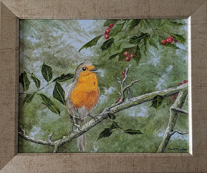 Robin on a Holly Tree Branch