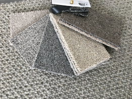 tenant friendly carpets_4.png