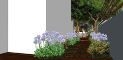 צמחיה 3