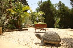 פסל בגינה