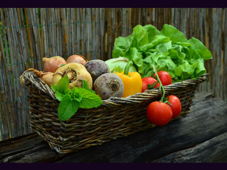 Čtecí čtvrtky #3: Úvod do GMO