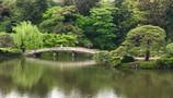 21. post-Japan planning