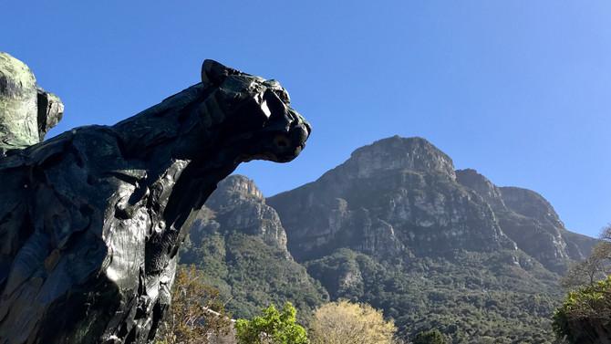9. Sunday around Cape Town