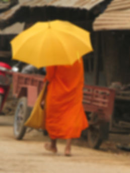 Shelley Dark visits Siem Reap